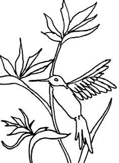 drawing of a hummingbird