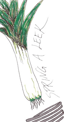 ink and marker drawing of a leek flying out of a spring