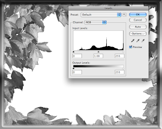 How To Make An Artistic Edge In Photoshop Using Screen and Multiply