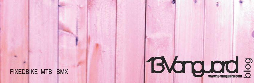 13-vanguard blog