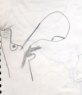 [giant+nose+guy.jpg]