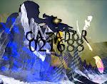 Cazador 021688 Nuevo Blog