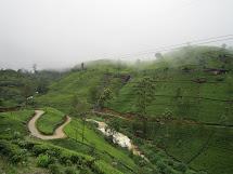 Twenty Ten Chelle & Ben Sri Lanka Part Ii