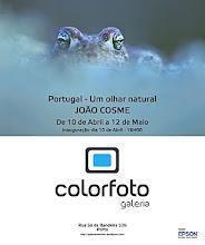 Portugal - Um Olhar Natural