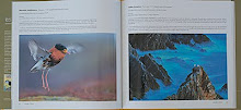 Portfolio no livro do  ASFERICO- International Nature Photography Competion-Italia