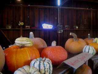 Neon Pie Sign + Pumpkins, Pie Ranch, Pescadero, CA