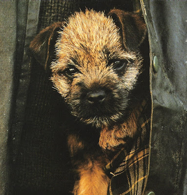 Barbour Ad Circa 2002, edited by lb for (l&l)