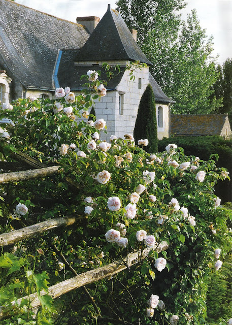 Charming French Village Garden via Maisons Côté Ouest as seen on linenandlavender.net