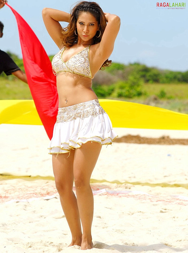 indian actress pictures and photoshoots: kim sharma pictures