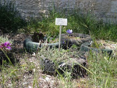Tire planter with sign