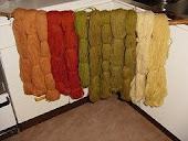Disas plant and mushroom dyed woollyarn