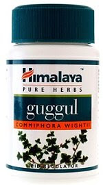 Guggul herb for cholesterol control