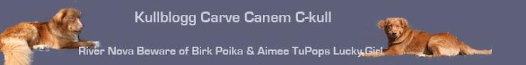 Carve Canem C-kull