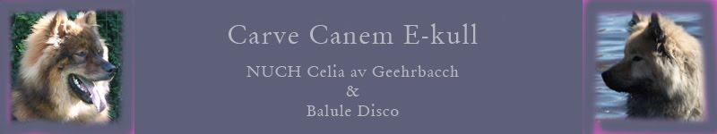 Carve Canem E-kull