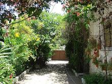 o jardim das delícias