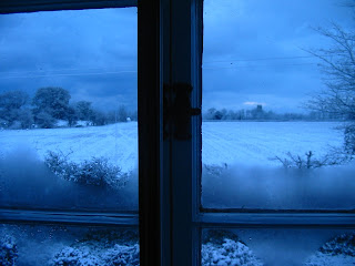 Cold weather, hot climate - view from my window