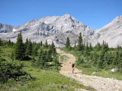 Rickerts Pass, Alberta