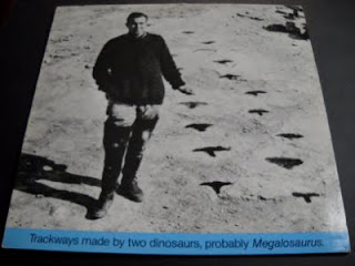 C. NEWMAN-TRACKWAYS MADE BY TWO DINOSAURS, PROBABLY MEGALOSAURUS, LP, 1983, UK