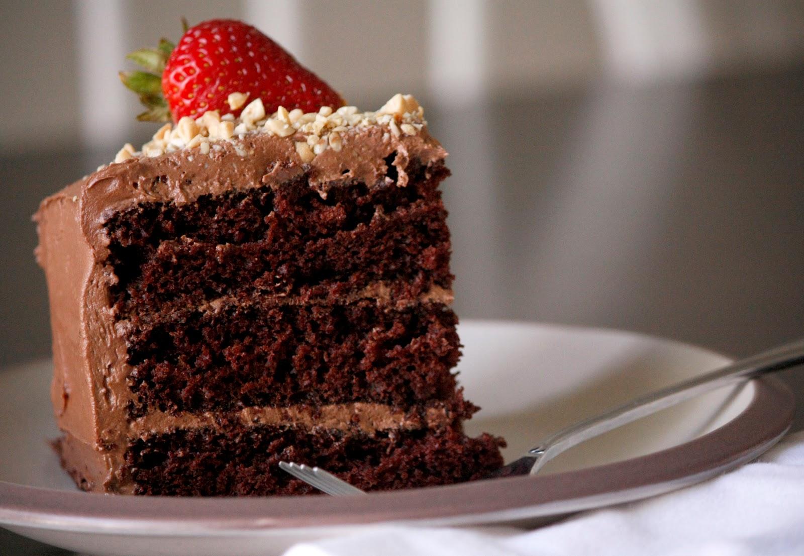 double chocolate cake recipe - delia creates