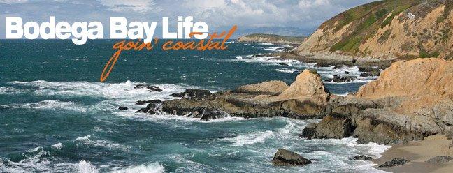 Bodega Bay Life