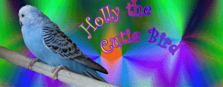 Holly the Cutie Bird