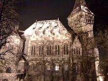 Budapest January 2010