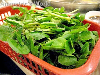 fresh watercress at KingOne Rotary Hot Pot
