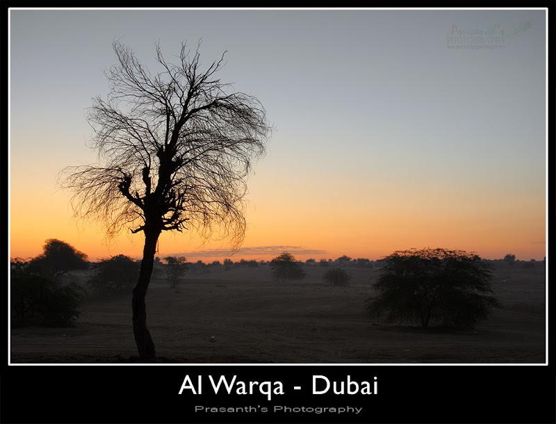 al warqua dubai UAE