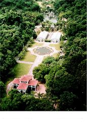 Visite o Jardim Botânico de São Paulo
