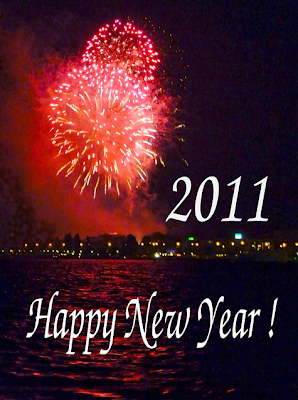 NEW YEAR AÑO NUEVO 2011