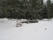 Trädgård i vinterskrud