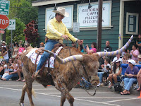 Long-horn bull rider in the Makawao, Maui, Hawaii, Fourth of July Parade