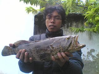 mancing di terumbu karang Rembang