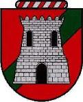 Brasão Família Braga