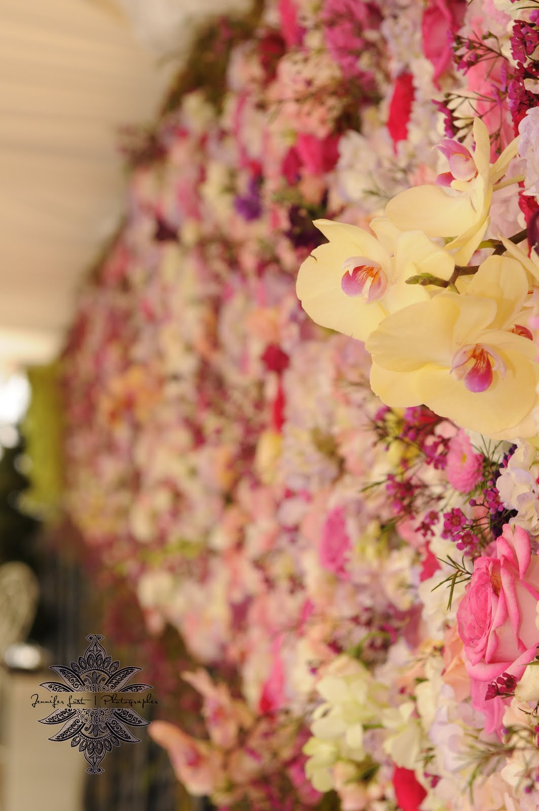 weddings florist washington dc 39 39 wall of flowers at the hay adams. Black Bedroom Furniture Sets. Home Design Ideas
