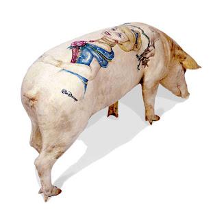 Porco Tatuado por Win Delvoye