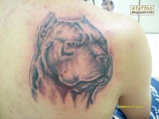 Pit Bull tatuado na parte de cima das costas