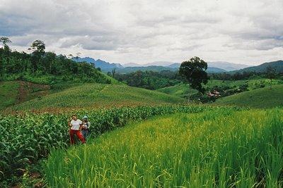 Trekking en el norte de Thailandia