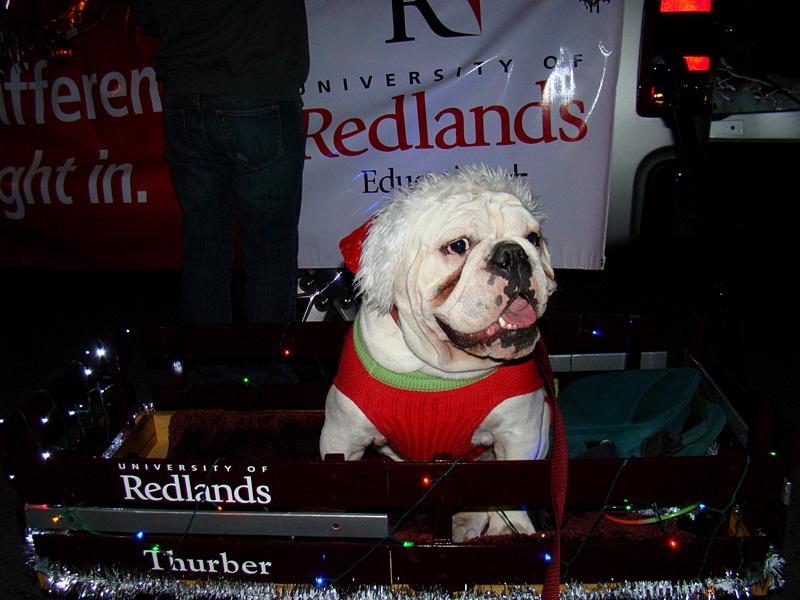 THURB'S BLURBS: Redlands Christmas Parade