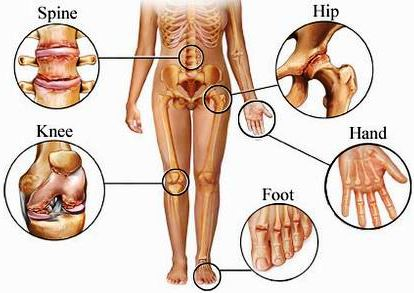 World of Human Anatomy & Physiology: \