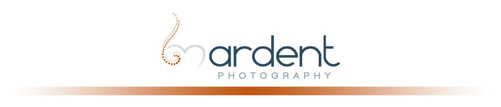 Wisconsin Wedding Photographer - Ardent Photography