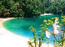 Taman Anggrek Bancea