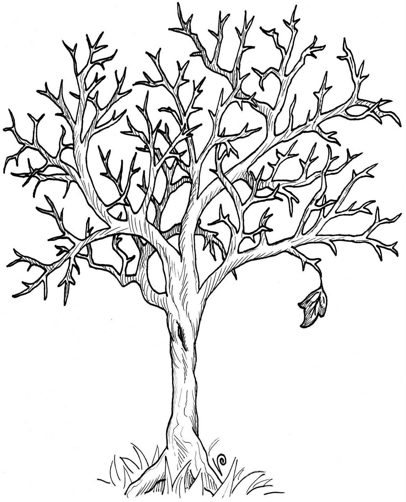 Vanessa Prentice S Art Blog Clip Art Club Has Officially Fall Tree Coloring Page