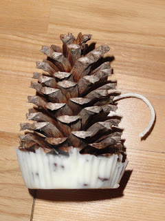 Pine Cone Fire Starters Tutorial by Mrs. Adventure