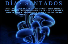 DÍAS SENTADOS -BLOG-