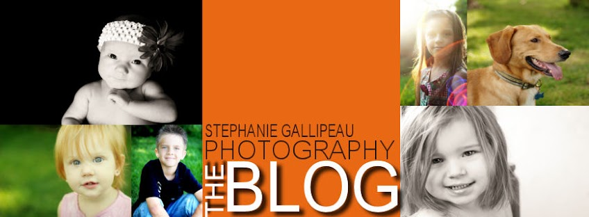 Stephanie Gallipeau Photography Info