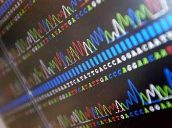 Http Www Wrghar Blogspot Com Blog Mata Pelajaran Biologi Sma Mengenal Teknik Dna Sequencing