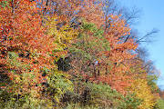Fall Foliage in Central Pennsylvania