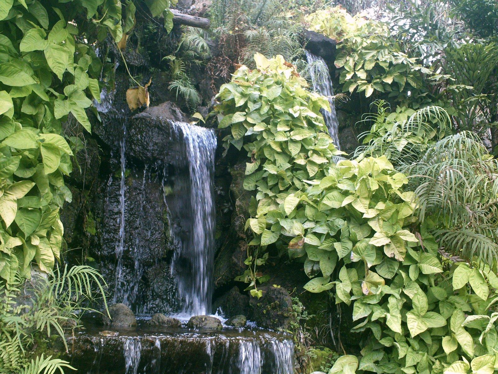 [waterfall+(2).JPG]