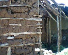 These Are Shelters for People Living In Dambuza